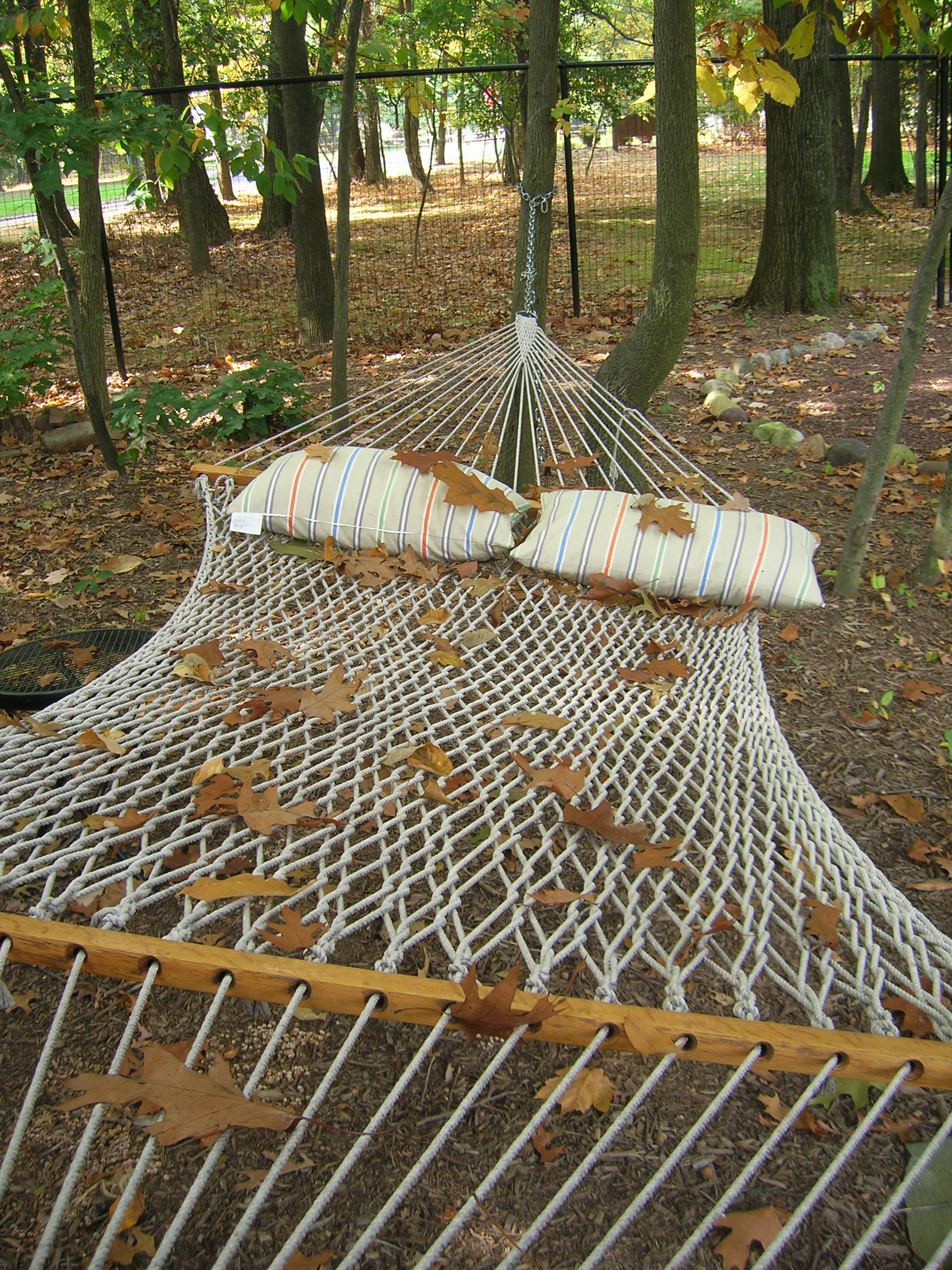 when leaves fall hammock     hammock   good humored  rh   goodhumored wordpress