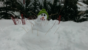 I tried making a voodoo snowman to ward off any more snow. Ironically, the following morning, he was covered in a few inches of fresh new snow.